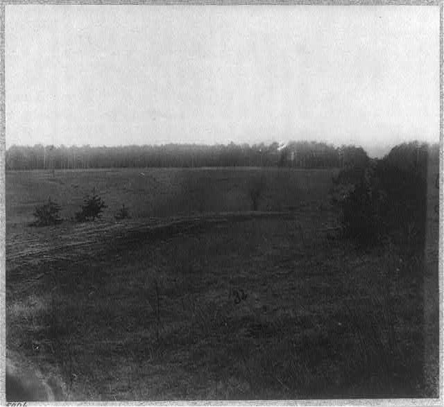 Saunders Field, Wilderness