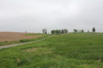 6. The Roulette Farm Lane which led to the Confederate position on Bloody Lane. The 69th New York Infantry on the right of the Brigade guided on this lane for their advance.