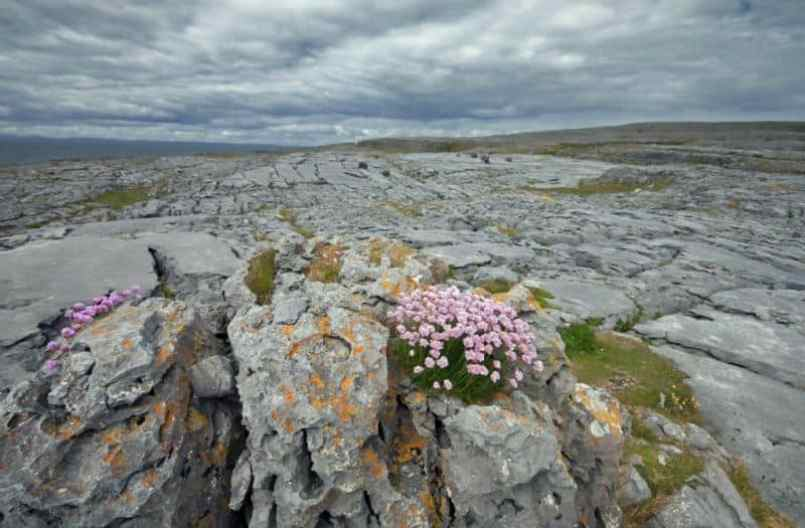Burren in Ireland are the most popular places to visit in Ireland.