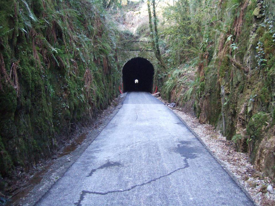 W tunnel 2