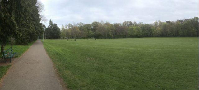 Dodder wide green area