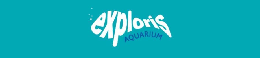 Exploris Aquarium Nov 2016 Belfast Banner