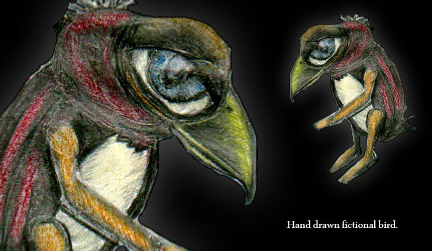 ARTWORK: Chicken Art