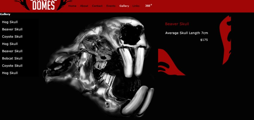 WEBSITE DESIGN: Online Catalog