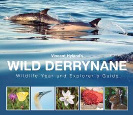 Wild Derrynane Logo