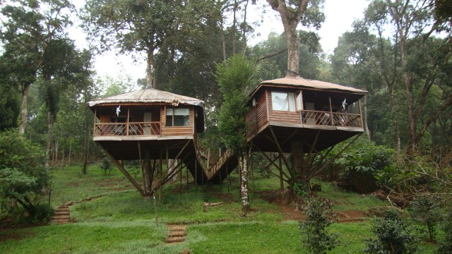 Image result for kerala tourism blog