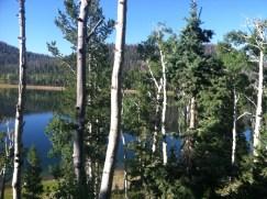 Navajo Lake.