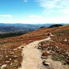 Flathead mountain in RMNP.