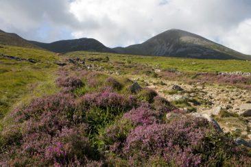 A Pilgrimage to Croagh Patrick