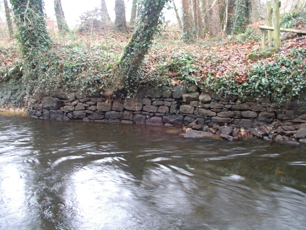 The stone bank on the south-east side of the cut (photo courtesy of Colin Becker)