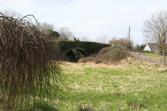 A bridge over an infilled section