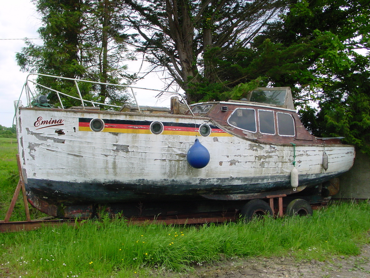 A few years later, Emina lies rotting in a field near Cloondavaun on Lough Derg