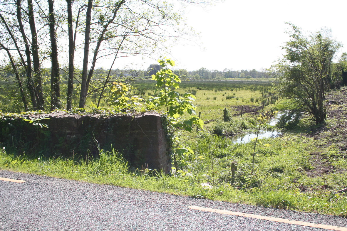 Looking over the drained bog from the road