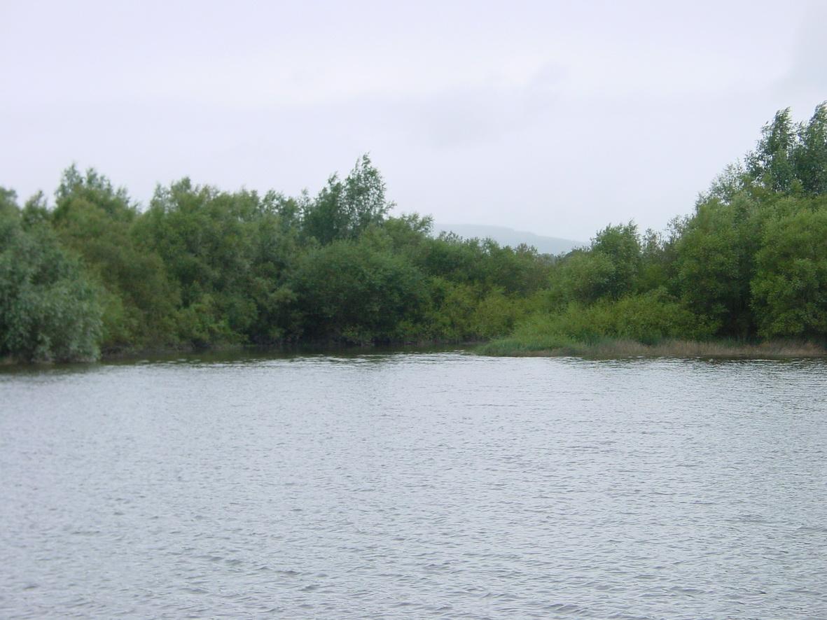 This may be the Lingaun River