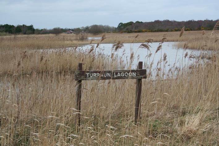 Turraun lagoon 1