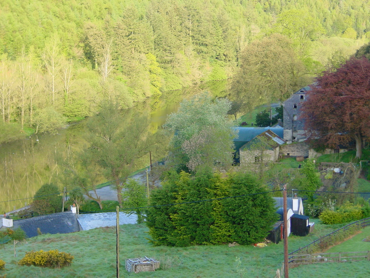 Looking upriver from the B&B (early morning)