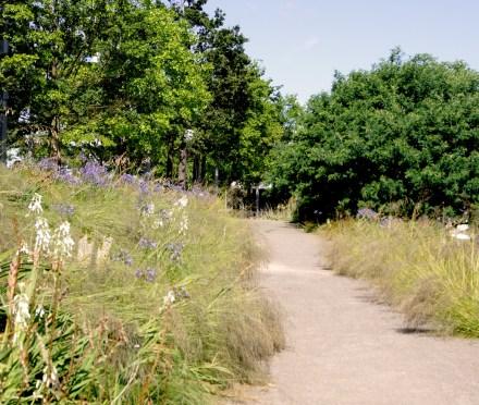 Southern Hemisphere (Olympia Park)