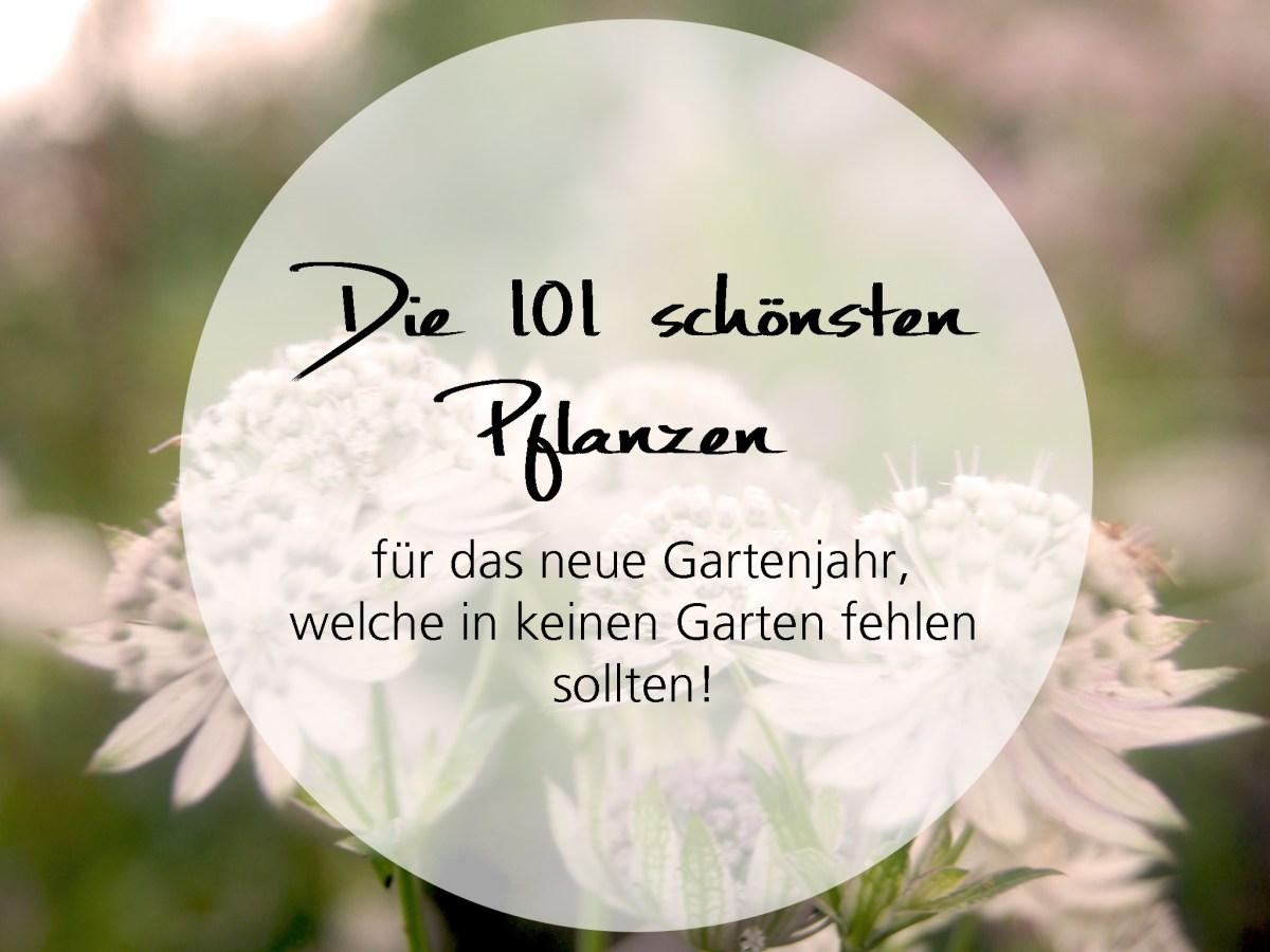 Die 101 schönsten Pflanzen für das Gartenjahr, welche in keinem Garten fehlen sollten!