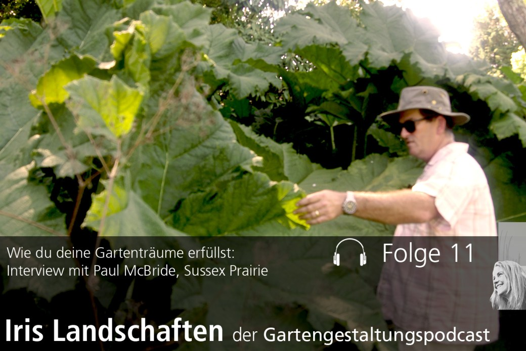 Interview mit Paul McBride