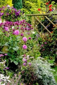Cottage Garten: Die 10 besten Tipps