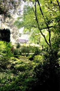 7 Tipps für Gartenfans in Neuseeland