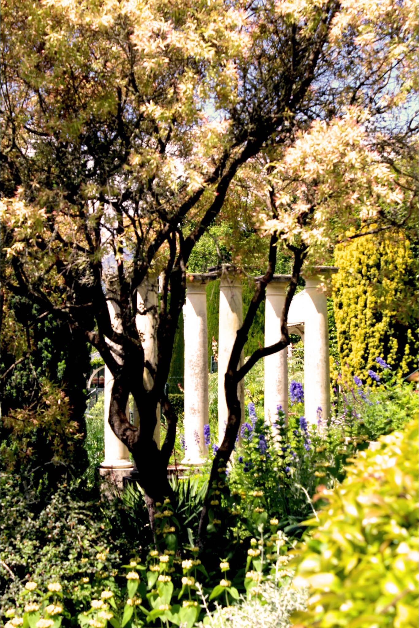 ohinetahi-garden-garden-gartengestaltung-garten-blog