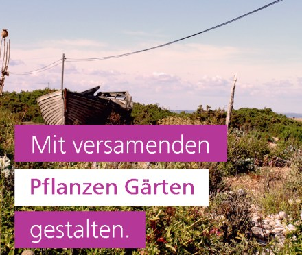 Blackbox Gardening Gartengestaltung