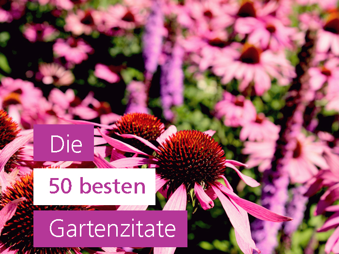Gartenzitate, die dich inspirieren
