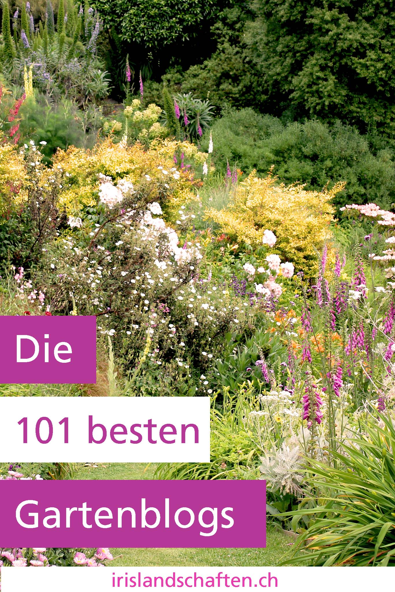 Gartenblog 2018 Gartengestaltung