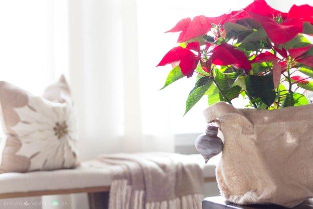 Holiday-Planter-Ornament