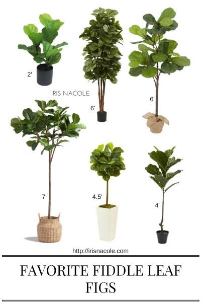 Favorite Faux Fiddle Leaf Figs