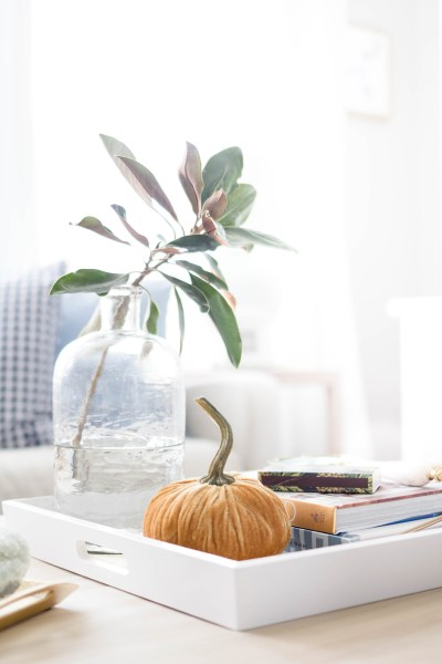 Fall Decor Prep: What I'm Stocking Up On