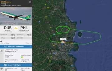 Samolot zawrócony na lotnisko w Dublinie po zderzeniu z ptakiem