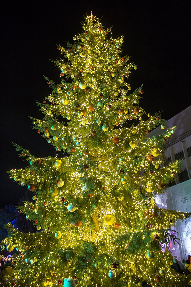 Christmas Fair in Chisinau, Moldova   Christmas tree at the main fair