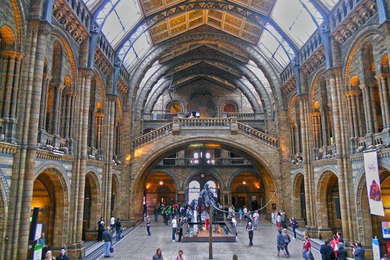Бесплатные достопримечательности Лондона | Музей естественной истории