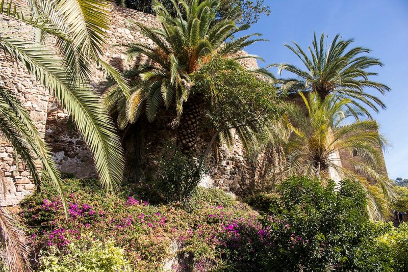 3 Weeks of Solo Travel in Spain: What to do in Malaga | The walls of the Alcazaba