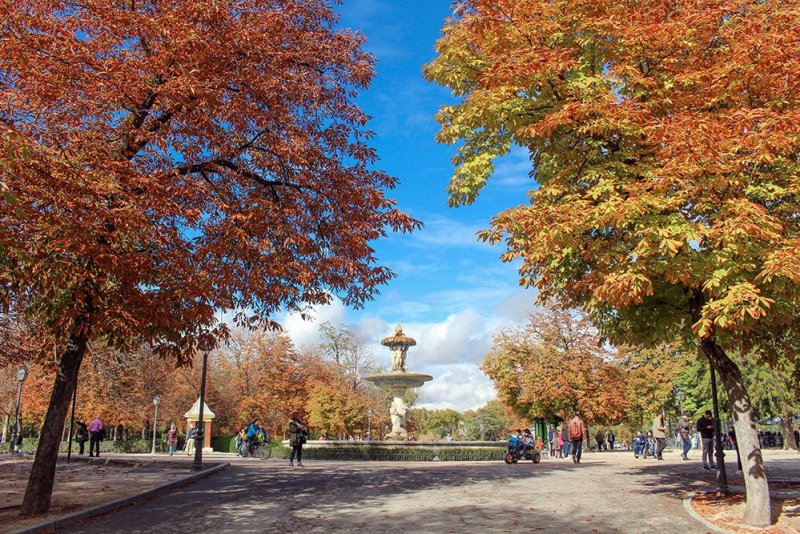 Free things to do in Madrid, Spain | Retiro Park