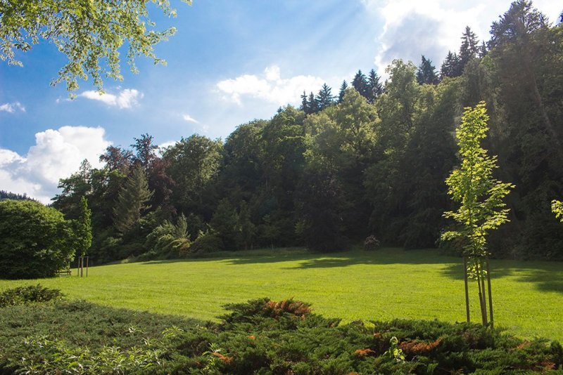 A day trip from Prague: what to do in Karlovy Vary   Parks
