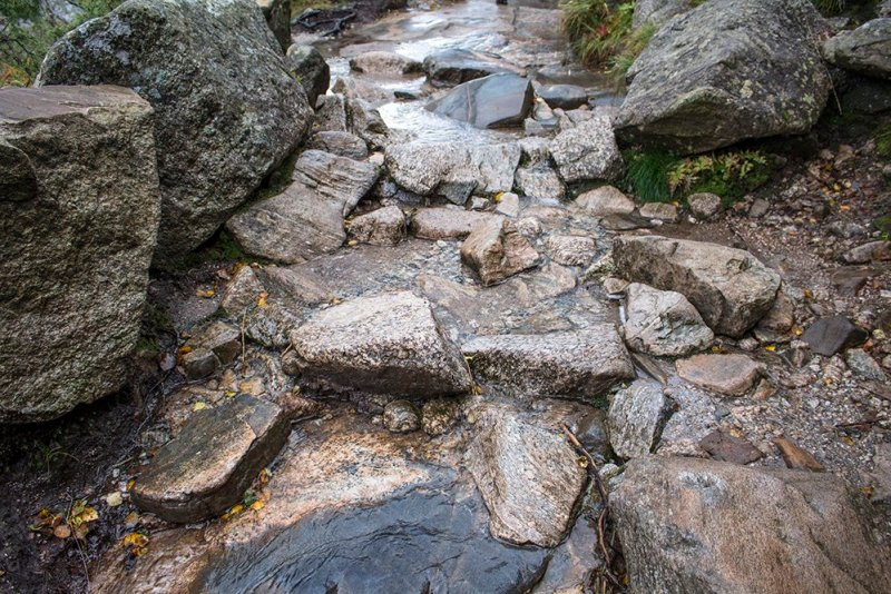 Preikestolen hike | Preikestolen trail