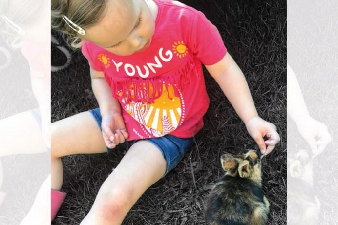 Nina konijnen