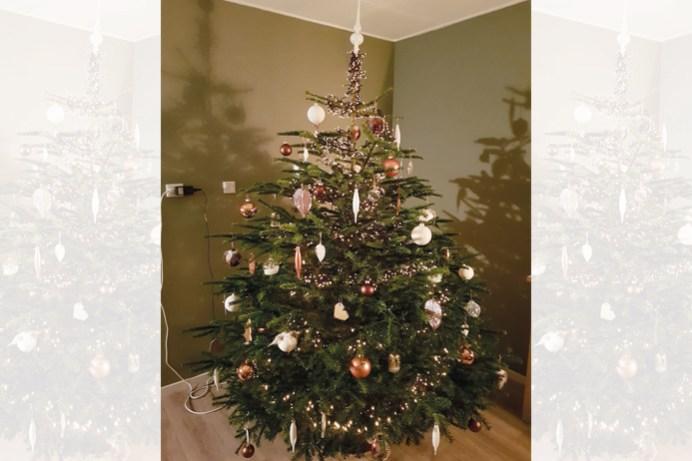 Kerstboom Sanne