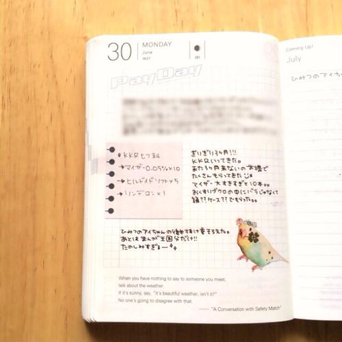 りたさんの手帳2