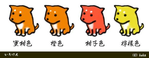 色犬-柑子色