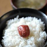 ユネスコ無形文化遺産「和食」を毎月紹介しようと思います