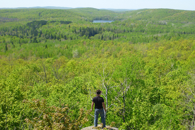 Image of a man standing at the edge of Corrigan's Lookout, looking at the trees and lakes of the Penokee range.