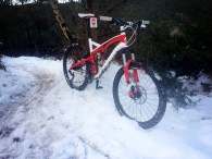 Snowy Cannock Chase