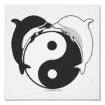 Yin Yang Dolphins Black/White Gifts