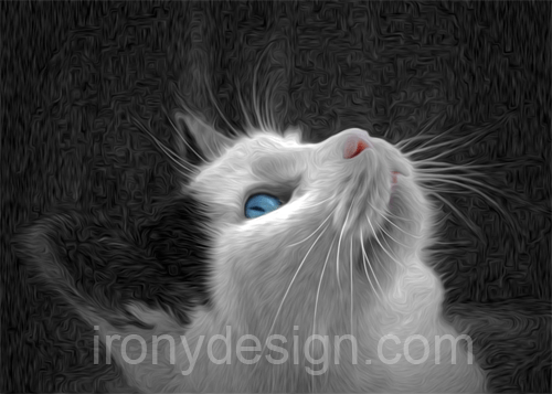 Blue Eyed Cat Photo Paint