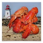 Lobster and Lighthouse Ocean Photograph