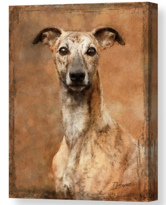 Whippet Dog Portrait Painting Canvas Print